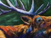 Elk Song